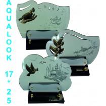Aqualook 25-17